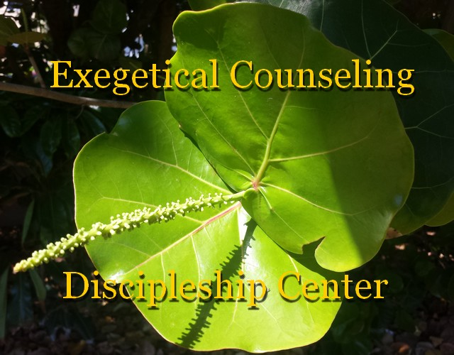 EXEGETICAL COUNSELING